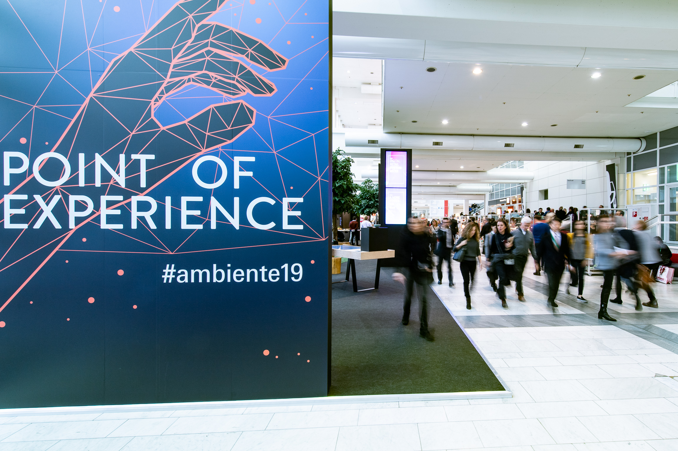 Point of Experience
